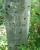 John S. Green - Headstone