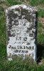 William H. Lee - Son of Lewis J.W. Lee & Nancy Ellen Pulliam